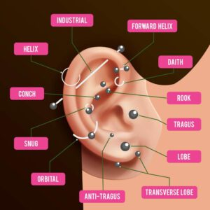 Ear Piercings Chart - Different Name of Piercings